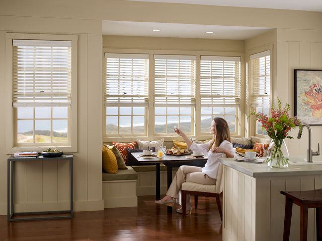 Lutron Shades & Blinds