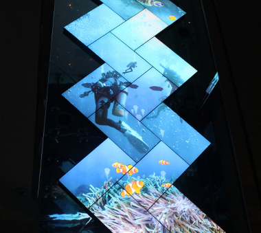 World's Biggest Video Mosaic